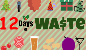 12 Days of Waste
